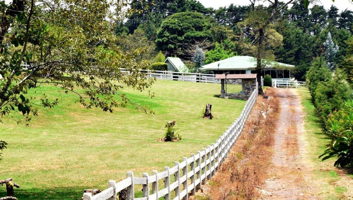 Proyecto de 11 Quintas